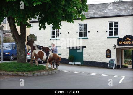 Kentisbeare village centre, Devon with ponies and the village pub - The Wyndham Arms - Stock Photo