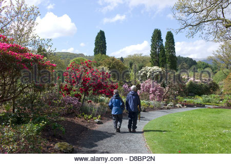 National Trust, Bodnant Gardens, Conwy Valley, North Wales, UK - Stock Photo