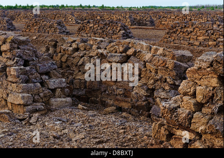 digged peat, goldenstedt moor, lower saxony, germany, europe - Stock Photo