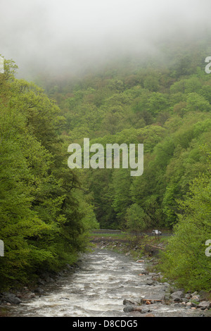 Low clouds hang over a churning Berkshire mountain river in the spring. - Stock Photo