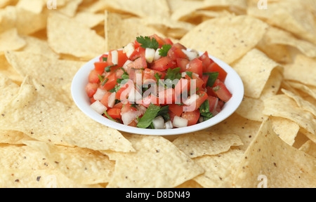 A bowl of pico de gallo (salsa fresca) surrounded by tortilla chips. - Stock Photo