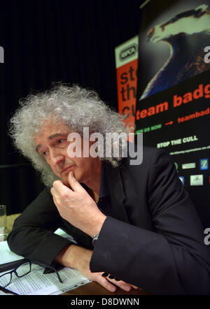 Dorchester, UK. 24th May, 2013. Former Queen guitarist and vice-president of the RSPCA Brian May spoke out against - Stock Photo