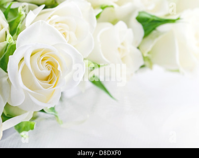 Closeup of white wedding roses on light romantic background with copy space - Stock Photo