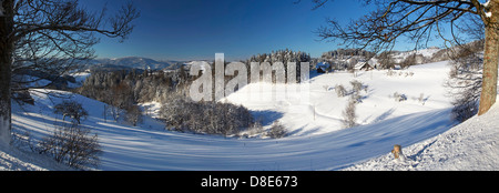 Black Forest in winter, near St. Maergen, Baden-Wuerttemberg, Germany, Europe - Stock Photo