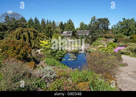 The Rock Garden and stream area of Royal Botanic Garden in Edinburgh Scotland - Stock Photo