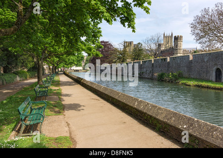 Moat surrounding the Bishops Palace in Wells, Somerset, UK, England - with Cathedral in background - Stock Photo