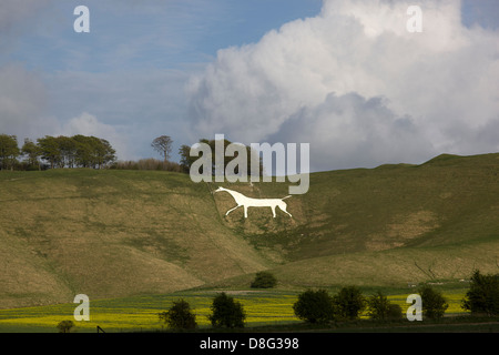 Cherhill White Horse from the nearby fields. - Stock Photo