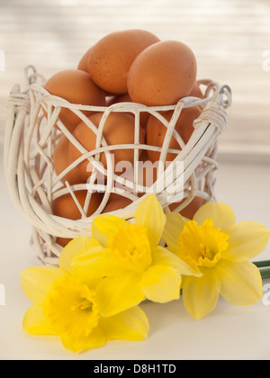 basket of eggs and yellow daffodils on a windowsill in front of a window blind - Stock Photo