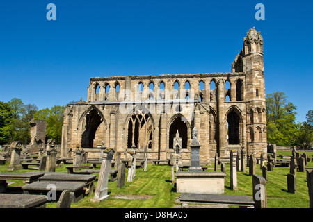 ELGIN CATHEDRAL IN EARLY SPRING A VIEW FROM ONE OF THE SIDES MORAY SCOTLAND - Stock Photo