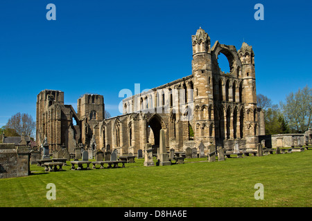 ELGIN CATHEDRAL IN EARLY SPRING A VIEW OF THE MAIN STRUCTURE MORAY SCOTLAND - Stock Photo