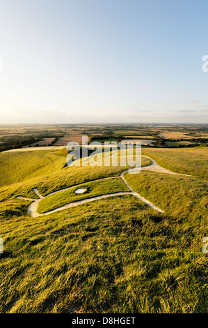 Uffington White Horse. Prehistoric Bronze Age chalk hill figure Oxfordshire, England. Close up over head, eye, ears - Stock Photo
