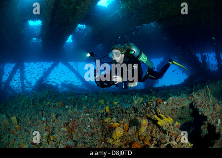 A female scuba diver swims in the Tenneco Towers dive site near Fort Lauderdale, Florida - Stock Photo
