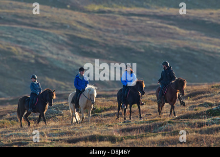 Horsemen riding horses in the mountains in the Dovrefjell–Sunndalsfjella National Park, Norway - Stock Photo