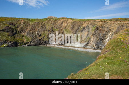 Porth Lleuog next to Whitesands Bay Pembrokeshire West Wales UK in the Pembrokeshire Coast National Park.   The - Stock Photo