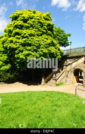 St Bernard\'s Bridge by the Water of Leith Walkway in Stockbridge ...