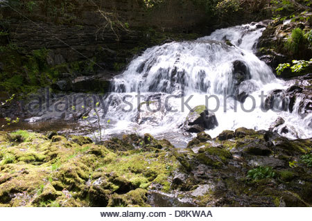 The 'Fairy Falls', Trefriw, Conwy Valley, North Wales, UK - Stock Photo