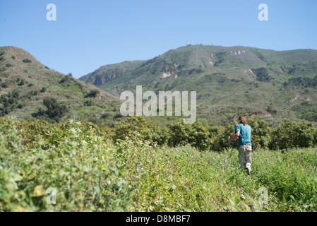 Man working on farm - Stock Photo