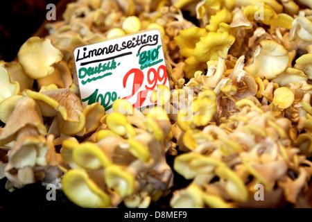 fresh mushrooms on weekly market - Stock Photo