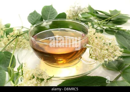 elderberry tea - Stock Photo