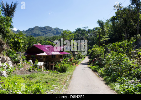 Tana Toraja countryside with traditional houses in Sulawesi, Indonesia - Stock Photo