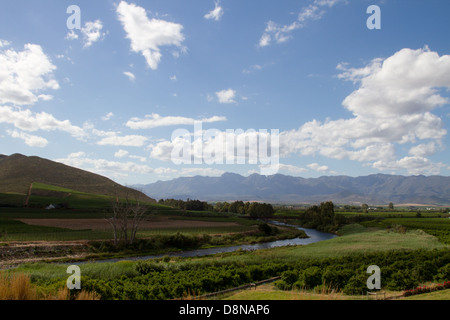 View over the Breede River, Robertson, South Africa, Vineyards in the foreground - Stock Photo