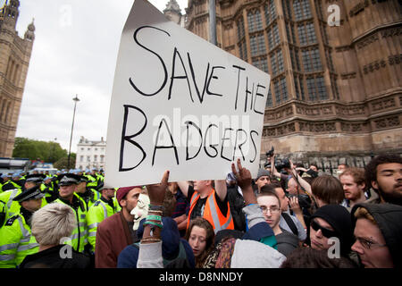 London, UK. 1st June, 2013. Rally at Westminster against the BNP national party by anti fascist campaigners and - Stock Photo