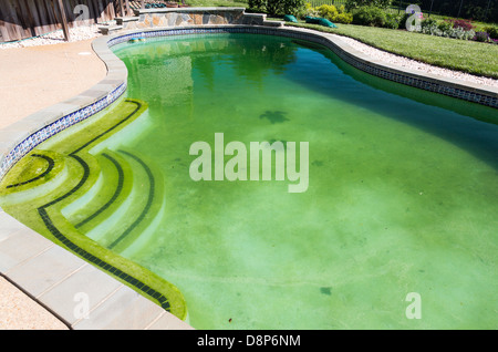 Dirty back yard home swimming pool with green algae filled stagnant water before cleaning - Stock Photo