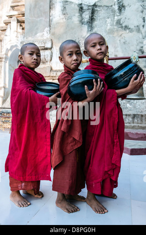 Novice Buddhist monks collecting alms bowls of food in the morning from villagers near Bagan Burma Myanmar - Stock Photo