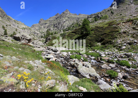 The Gordolasque valley in the Alpes-Maritimes  in the Mercantour national Park, France - Stock Photo