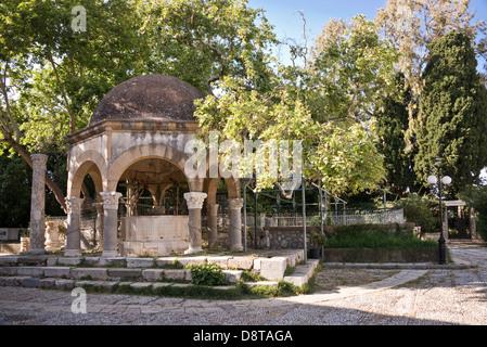 Plane tree of Hippocrates on Platia Platanou in Kos, Greece