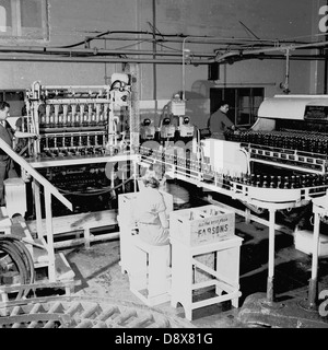 Historical picture from 1950s showing a section of a bottling plant. - Stock Photo