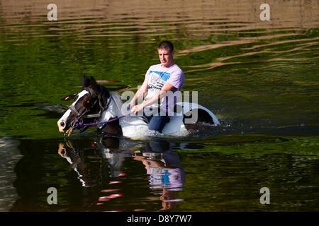 Appleby, Cumbria, Uk. 6th June, 2013.  Brian bathing his horse in the River Eden at the Appleby Horse Fair in Cumbria. - Stock Photo