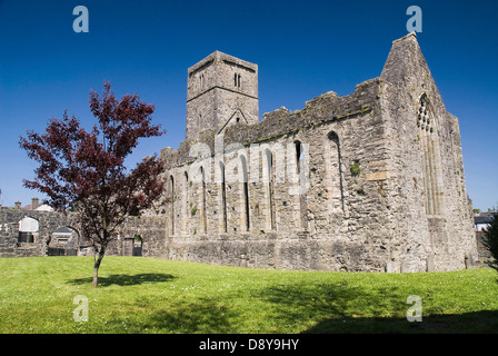Sligo Abbey Dominican Friary founded in the mid - 13th century  Blue Caribbean Cultural Cultures Eire European Hispanic - Stock Photo