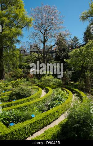 Netherlands, Amsterdam, Botanical Gardens - Stock Photo