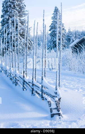 Wintry mountain pasture, Sweden. - Stock Photo