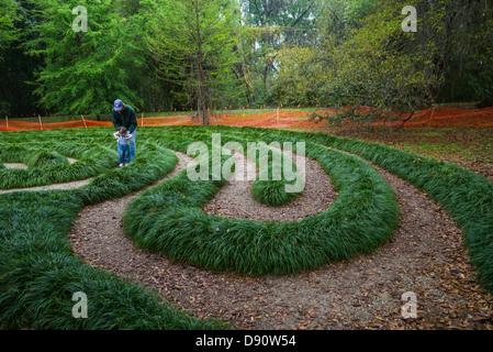 Walking maze at Kanapaha Botanical Gardens, Gainesville, Florida ...