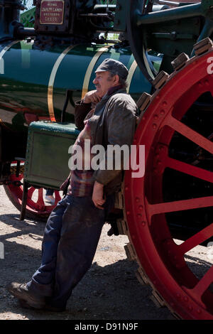 Hampshire, England, UK. 8th June 2013. The steersman of a steam traction engine has a restful moment during War - Stock Photo