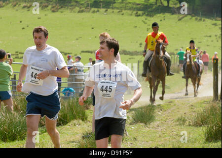 Llanwrtyd Wells, UK. 8th June 2013. Over 400 runners compete against 65 horses in the Man V Horse 23 mile marathon, over gruelling mountainous terrain.The event was conceived by Gordon Green at his pub the Neuadd Arms in 1980 upon overhearing a discussion whether a man was equal to a horse running cross country over distance. The cash prize for beating a horse was increased each year by £1,000 until Huw Lobb won £25,000 in 2004 beating the first horse by 2 mins with a time of 2:05:19. Credit: Graham M. Lawrence/Alamy Live News. Stock Photo