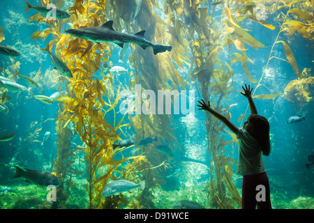 Amazed Young Girl Standing Up Against Large Aquarium Observation Glass Reaching for Leopard Shark. - Stock Photo