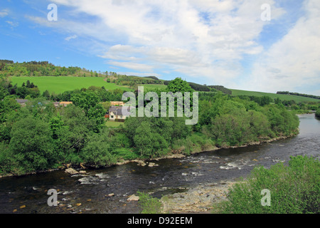 Middle Ettrick, Scottish Borders, Fly Fishing, Spinning, River Ettrick