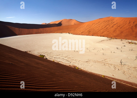 Dead trees (thought to be 900 years old) and sand dunes at Deadvlei, Namib-Naukluft National Park, Namibia, Africa - Stock Photo
