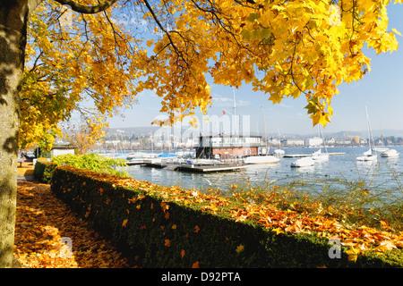 Sunny Autumn Day at Lake Zurich, Zurich, Switzerland - Stock Photo