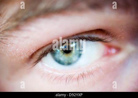 Blue eye, close-up - Stock Photo
