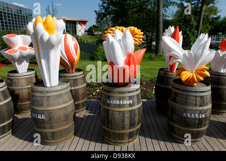 A spice exhibit at the International Garden Show 2013 (IGS) on Wilhelmsburg Island in Hamburg, Germany. - Stock Photo