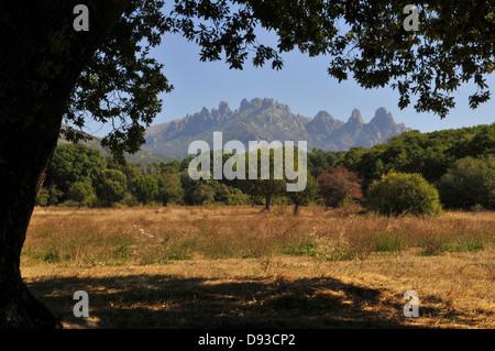 Aiguilles de Bavella, View from Quenza, Col de Bavella, Alta Rocca Region, Corse-du-Sud, Corsica, France - Stock Photo