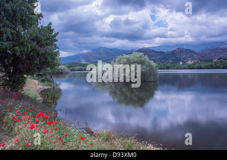 Landscape in Manzanares del Real lake in Regional Park of Manzanares in Madrid. Reflections of one big bush in the - Stock Photo
