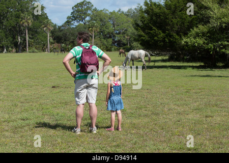 Father and daughter watch the wild horses at Dungeness, Cumberland Island, Georgia - Stock Photo