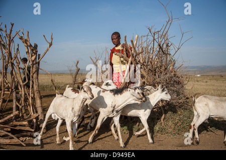 Maasai family in Rift Valley of Africa herding goats - Stock Photo