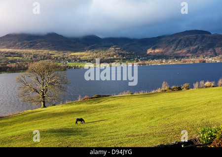 View of Lake Coniston from Brantwood, the home of John Ruskin. - Stock Photo