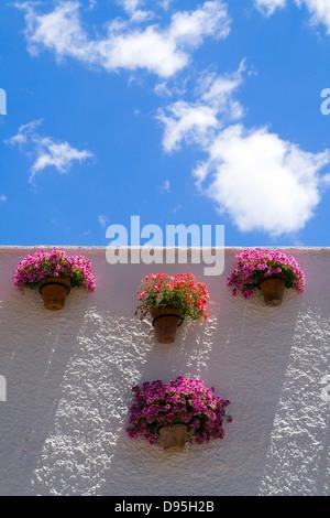 Flowers in Pots on the Paseo del Balcón de Europa - the Balcony of Europe - Stock Photo